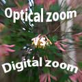 Optical vs. Digital Zoom — Which Is Better?