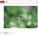 Photoxels on Pinterest
