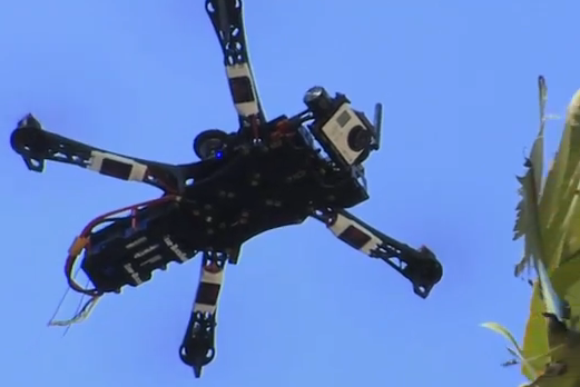 Aerial drone used to videotape Naples Zoo. (Image from its YouTube video.)