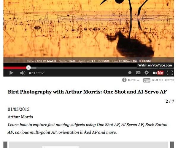 Bird Photography with Arthur Morris