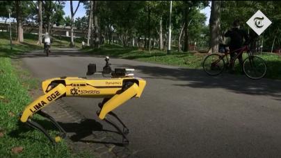 Robot Zero: The Unintentional Rise of Robots