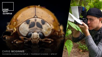 Olympus LIVE: Macro Photography with Chris McGinnis at 8 PM ET Tonight