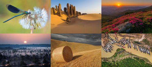 From July 1st to July 31st, 2020: Photograph the Earth! Wiki Loves Earth Photography Competition