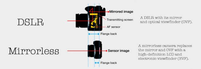 What Are Mirrorless Cameras?